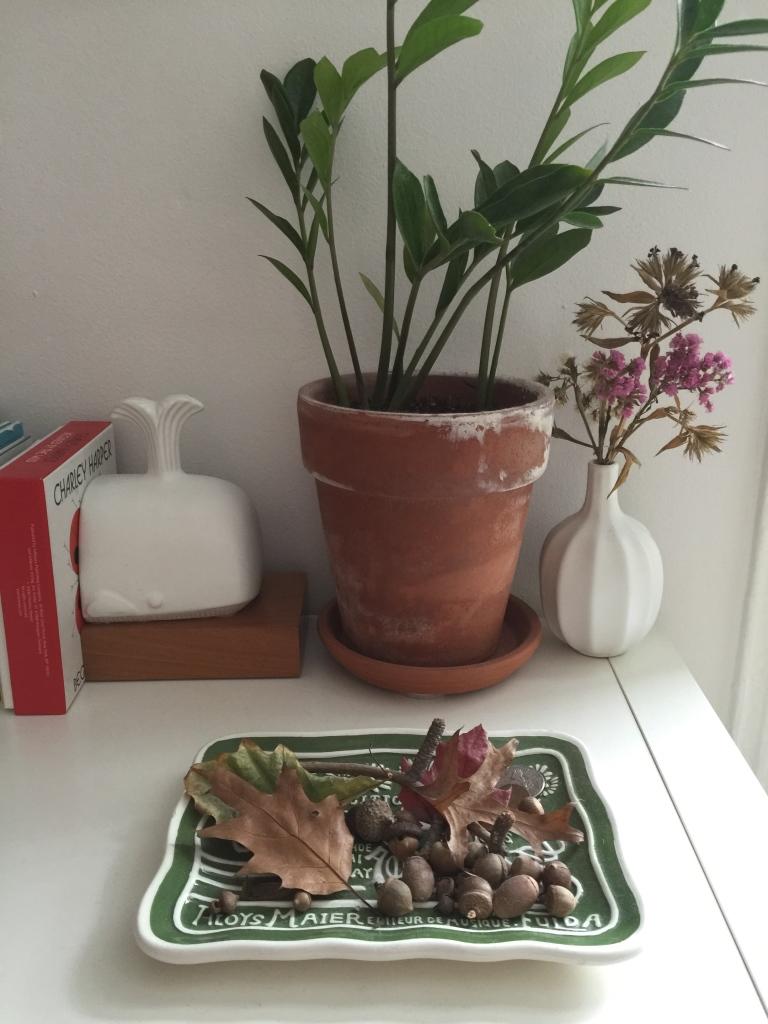 knicknacksandplants